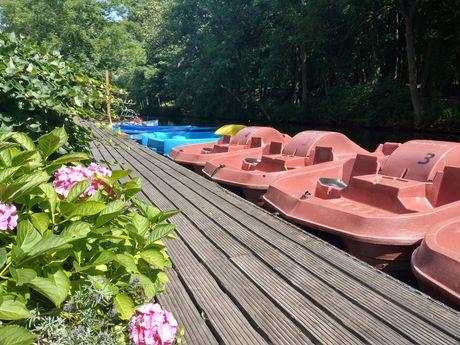 Ein hölzerner Bootssteeg gesäumt von Pflanzen und Treetbooten