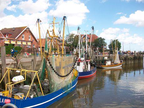 Zu sehen sind mehrere Fischkutter im Hafen von Neuharlingersiel