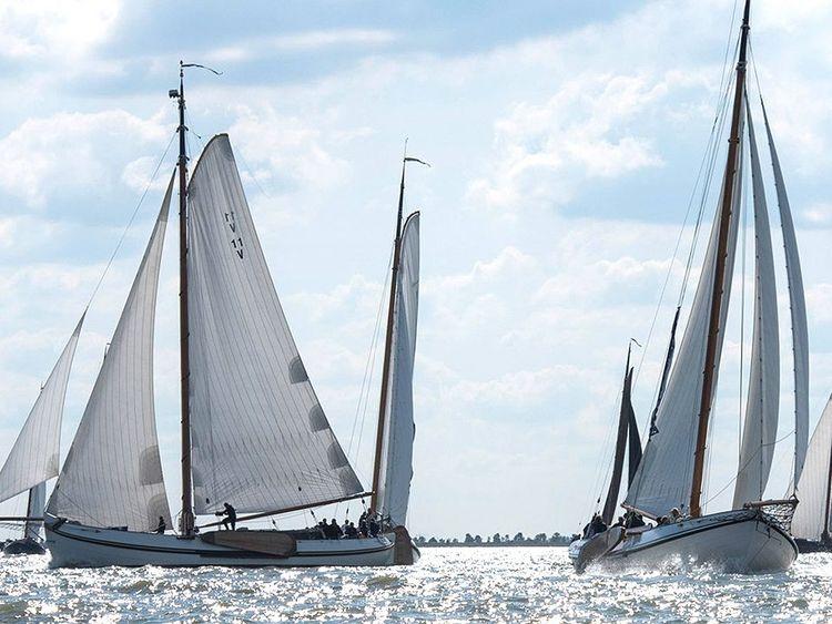 Zu sehen ist die Seitenansicht mehrerer Segelboote bei Sonnenschein auf dem Meer