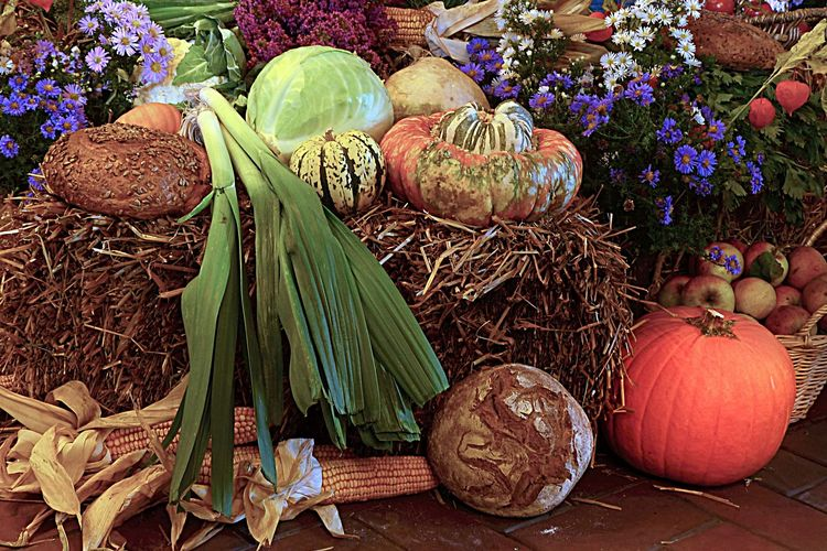 Zu sehen ist verschiedenes Gemüse auf einem Heuballen, außerdem ein Brot und lilafarbene Blumen.