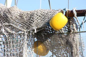 Krabbenkutterfahrt ab Hafen Greetsiel