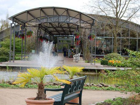 Zu sehen ist eine Bank vor einem Springbrunnen vor der Blumenhalle Wiesmoor