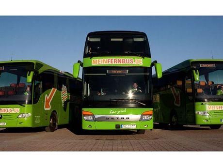 Zu sehen sind 3 Busse von Flixbus von vorne
